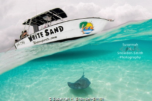 Stingray Sandbar is a special place to photograph on Gran... by Susannah H. Snowden-Smith